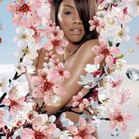 cheri_dennis_blossom.jpg